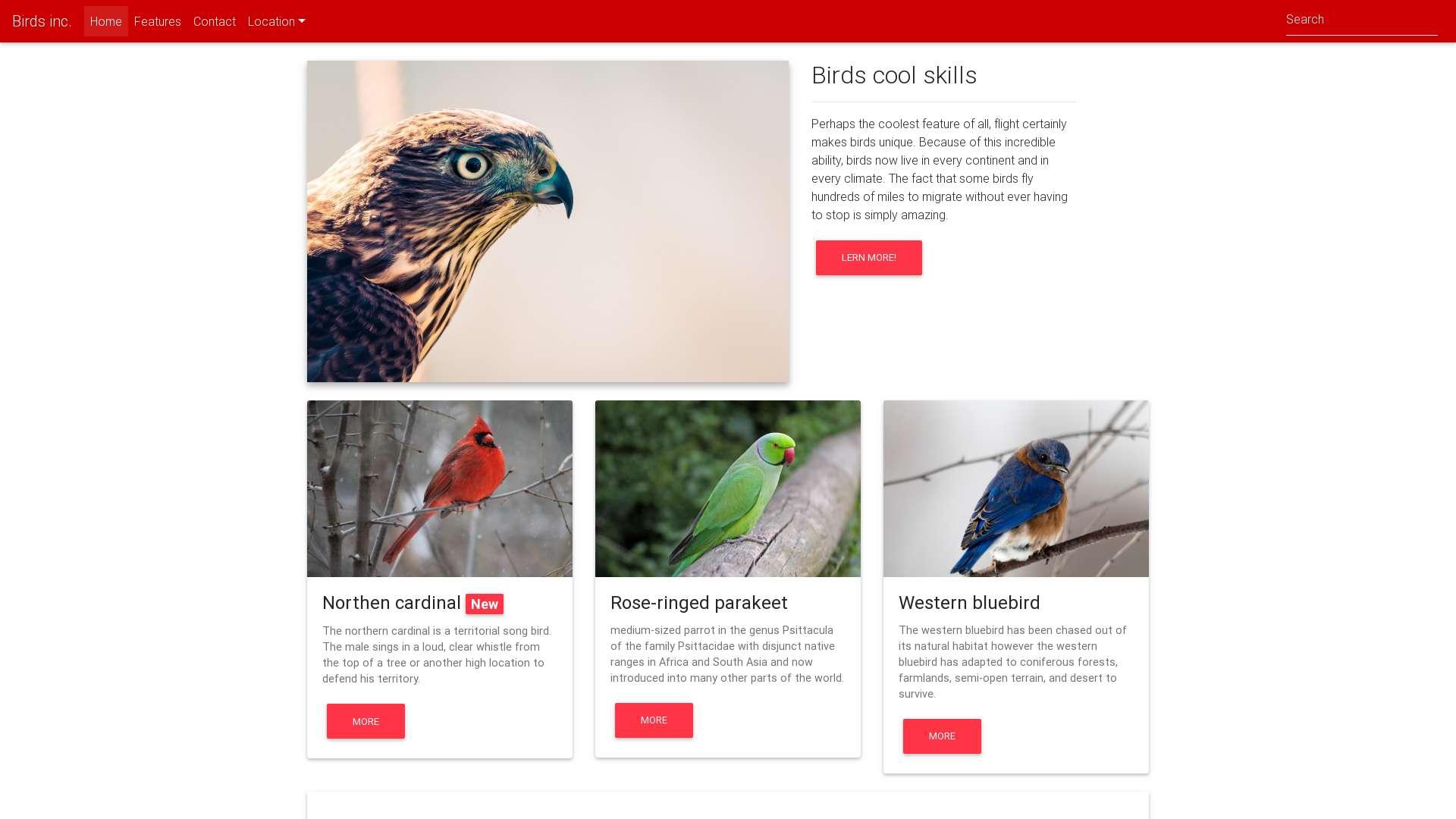 Bartosz Palewicz - Corporate website