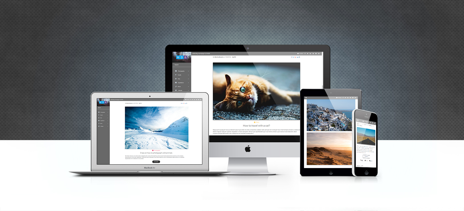 Display of various Bootstrap Blog Templates Pack